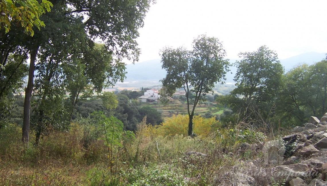 Vistas desde la masia a los campos