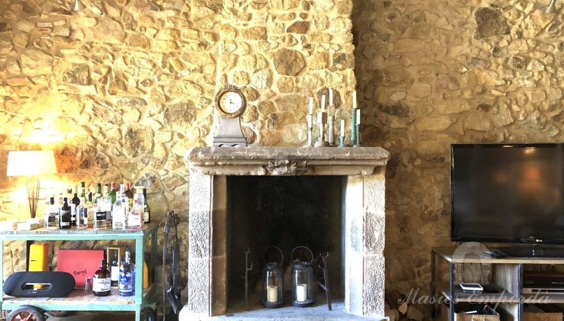 Detail of the fireplace in the living room