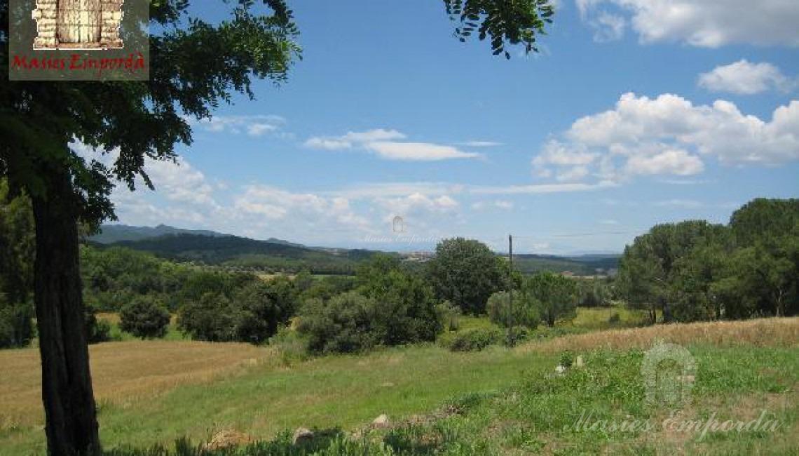 Otra perspectiva de los campos de la propiedad y parte del bosque de la misma