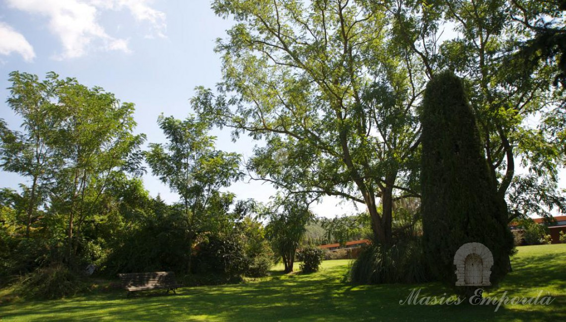Mature and mature garden with a variety of trees and a well-kept lawn.