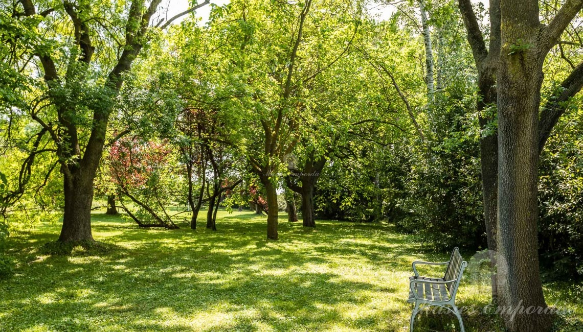Views of the garden that surrounds the farmhouse