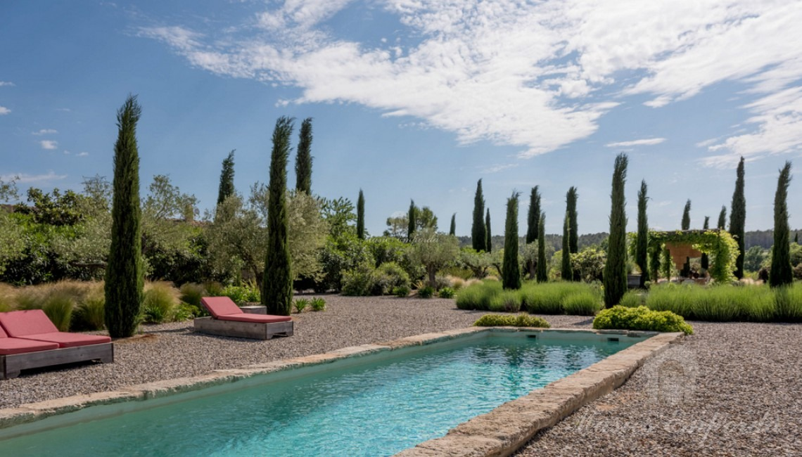 Views of the pool and garden