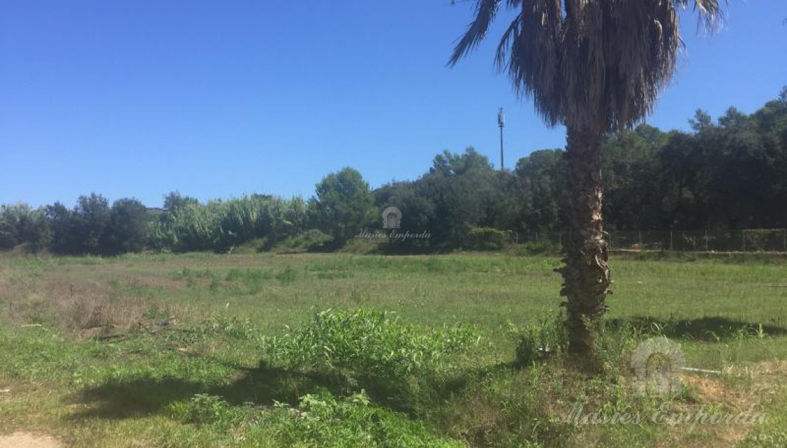 Vista de la parcela de la propiedad