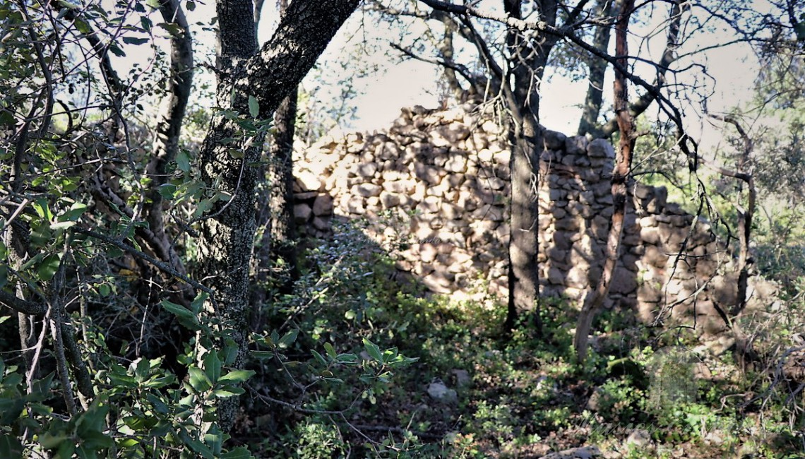 Details of the walls of one of the annexes to the farmhouse