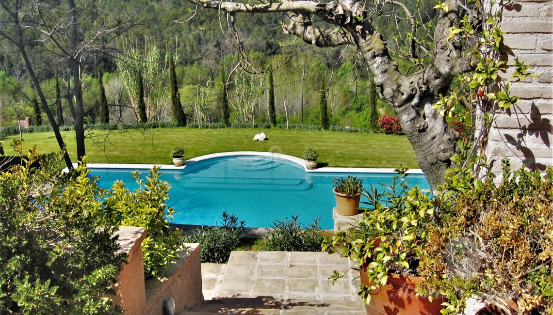 Views of the pool from the porch with the summer dining room