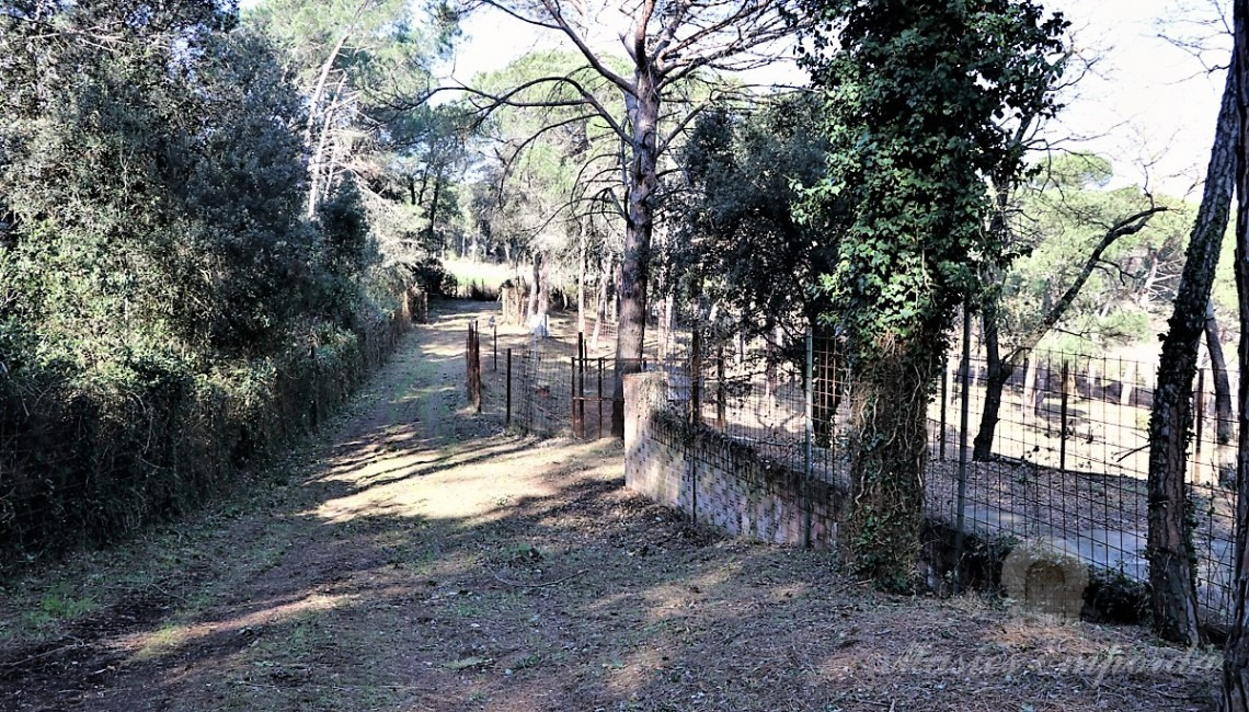 Way of access to the stables