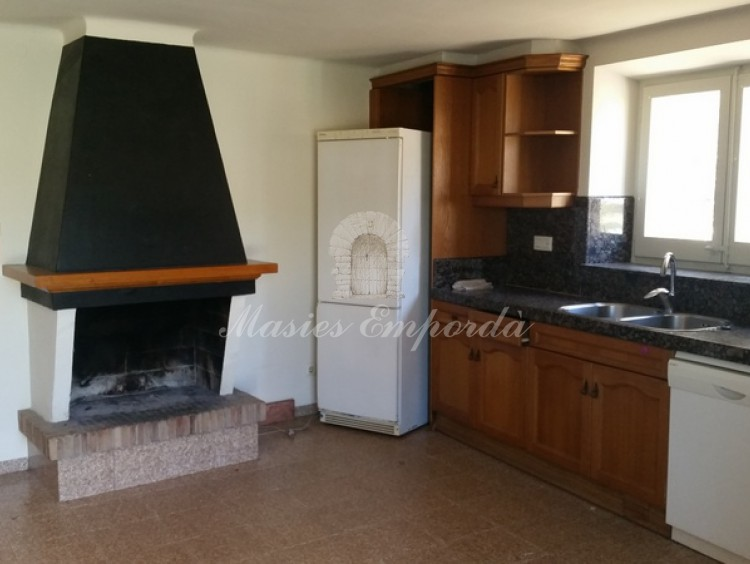 Kitchen detail with fireplace