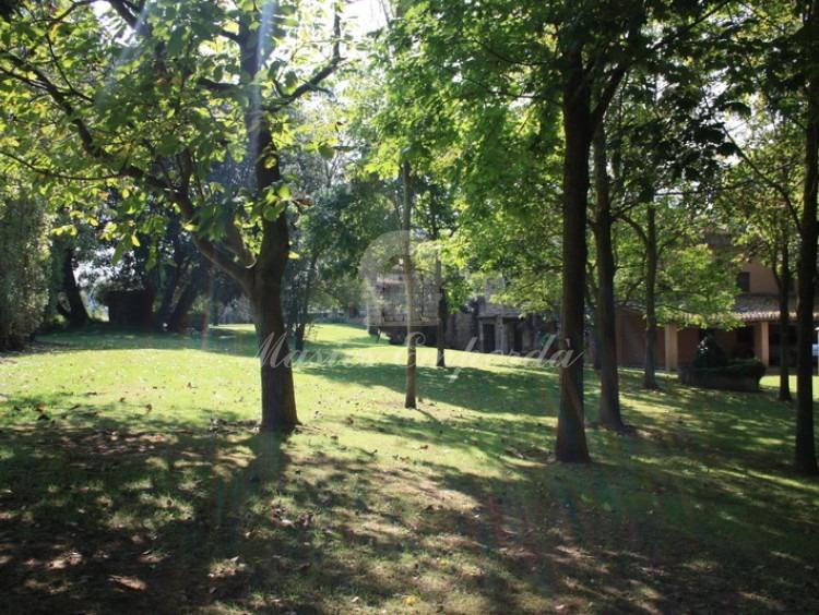 Jardín de la propiedad con arboleda