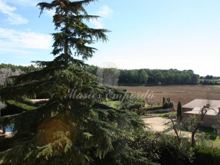 Vista general desde la terraza de los campos y bosques de la zona