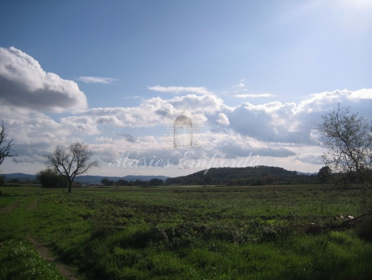 Views of the fields surrounding the farmhouse