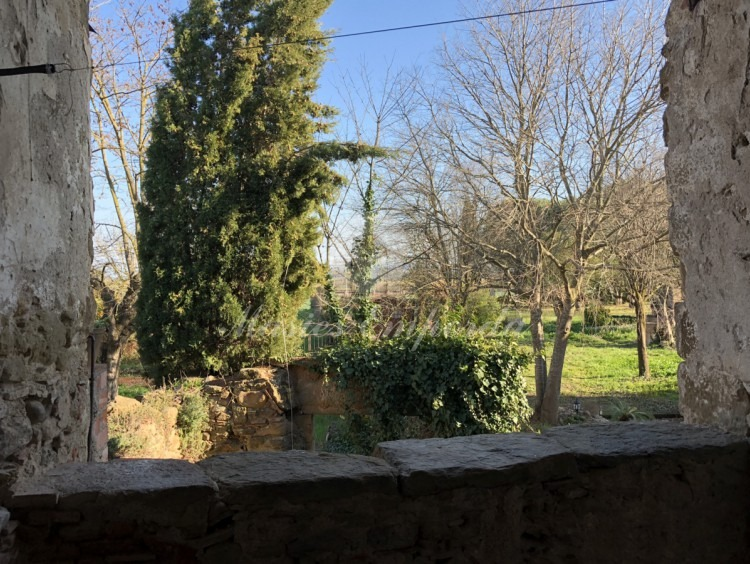 View of the garden from the terrace on the first floor