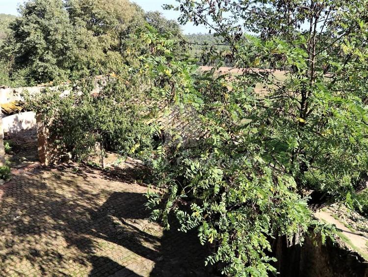 Vista del patio desde la terraza