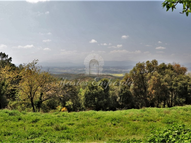 Views of the Gerona valley from the plot