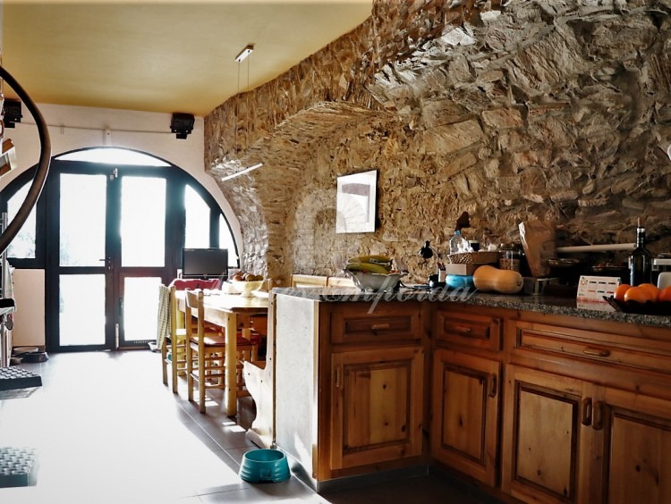 Kitchen with direct access to the garden