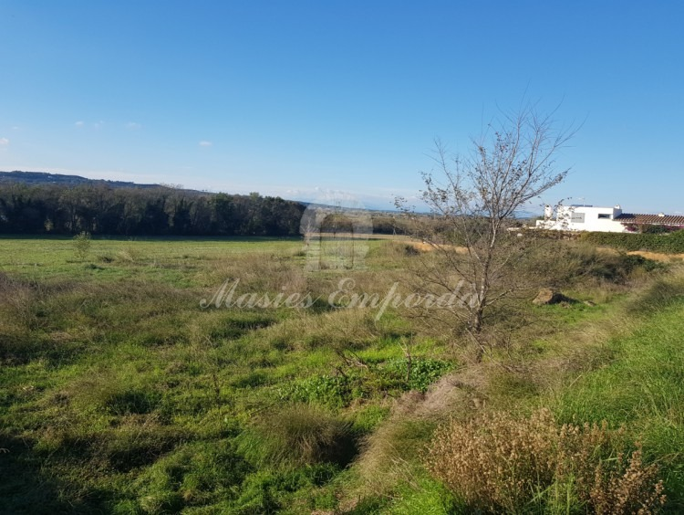 View of the plots and the fields and forests